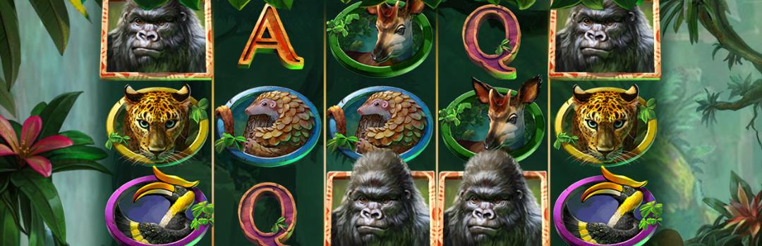 Spielen Sie Gorilla Kingdom Slot in der Schweiz